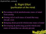 6 right effort purification of the mind