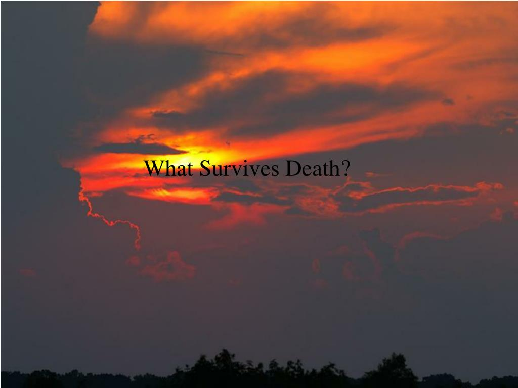 What Survives Death?