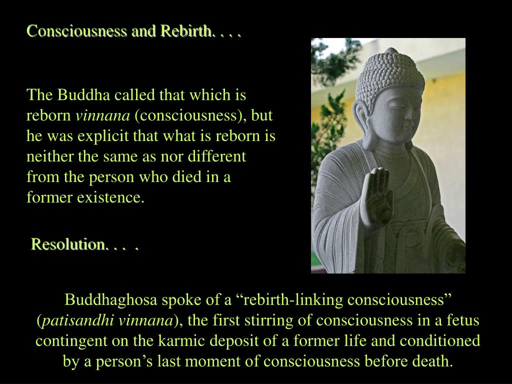 Consciousness and Rebirth. . . .