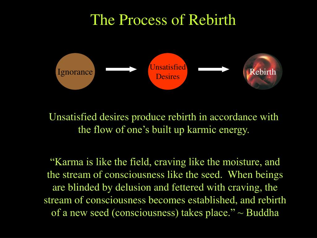 The Process of Rebirth
