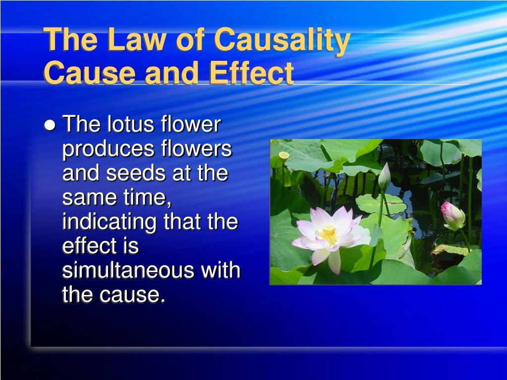The Law of Causality