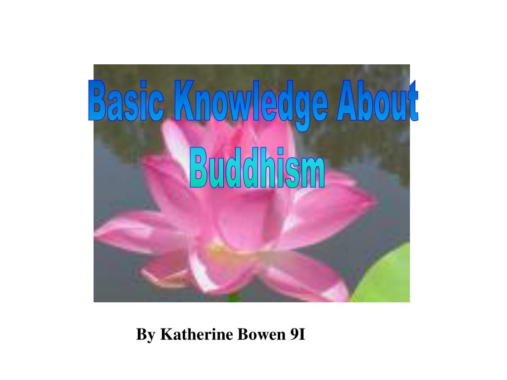 Basic Knowledge About