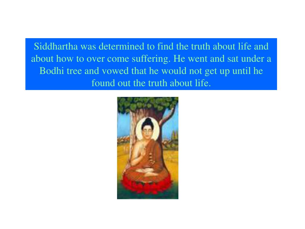 Siddhartha was determined to find the truth about life and about how to over come suffering. He went and sat under a Bodhi tree and vowed that he would not get up until he found out the truth about life.