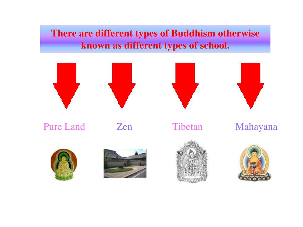 There are different types of Buddhism otherwise known as different types of school.
