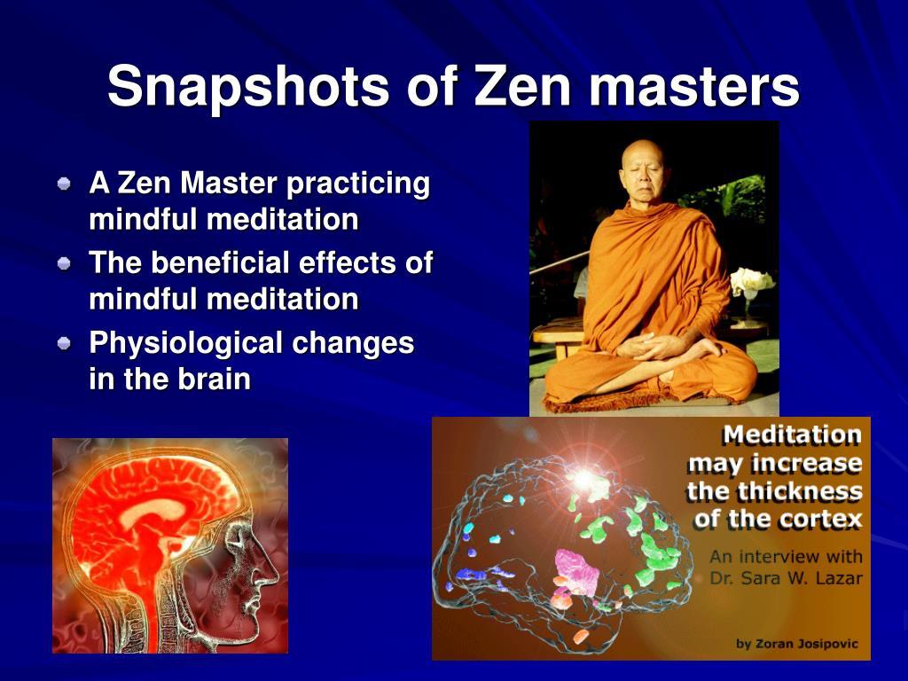 Snapshots of Zen masters