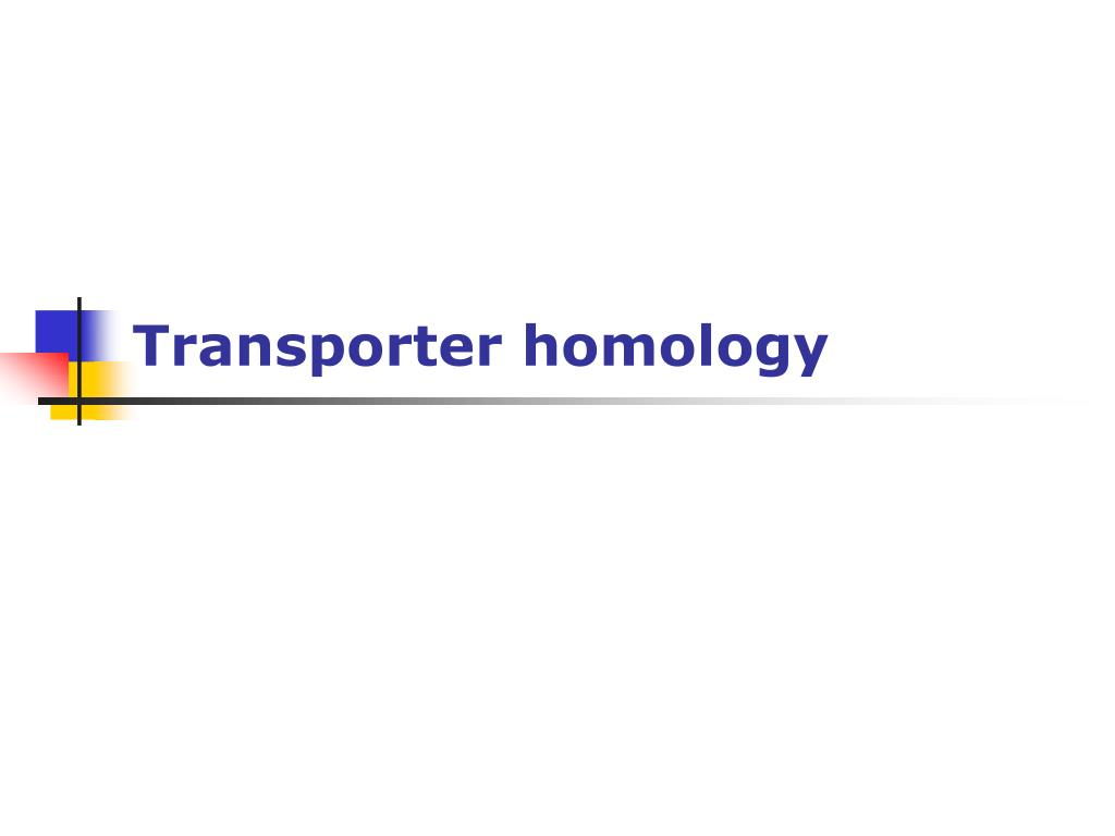 Transporter homology