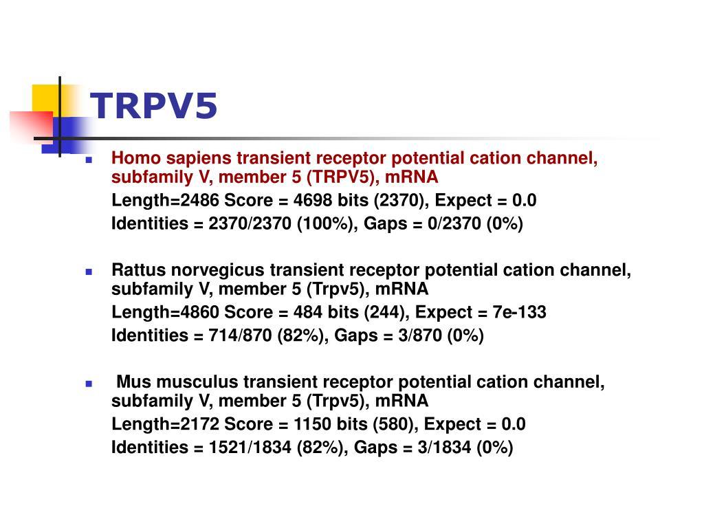 TRPV5