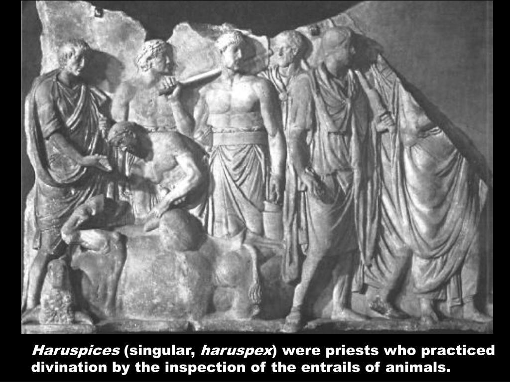 Haruspices