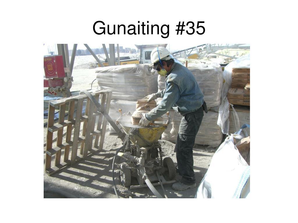 Gunaiting #35