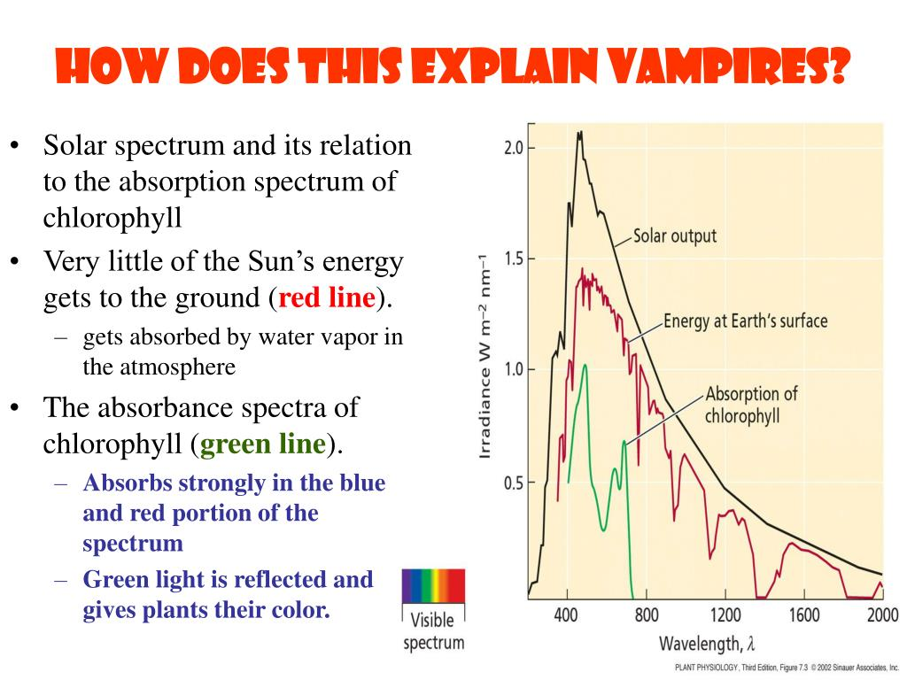 How does this explain vampires?
