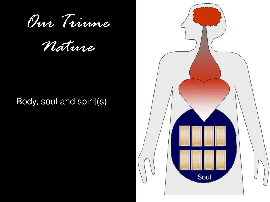 Our Triune Nature