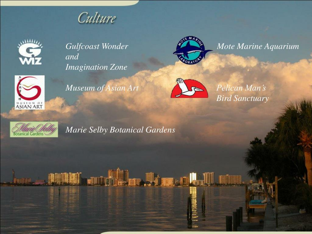 Gulfcoast Wonder and