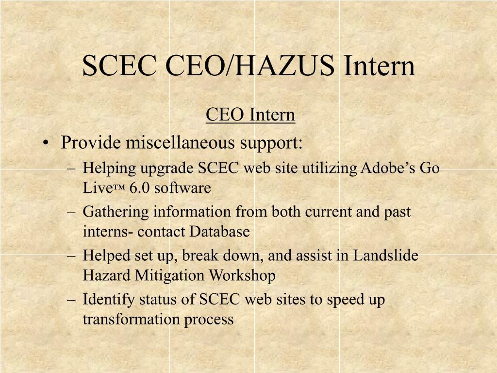 CEO Intern