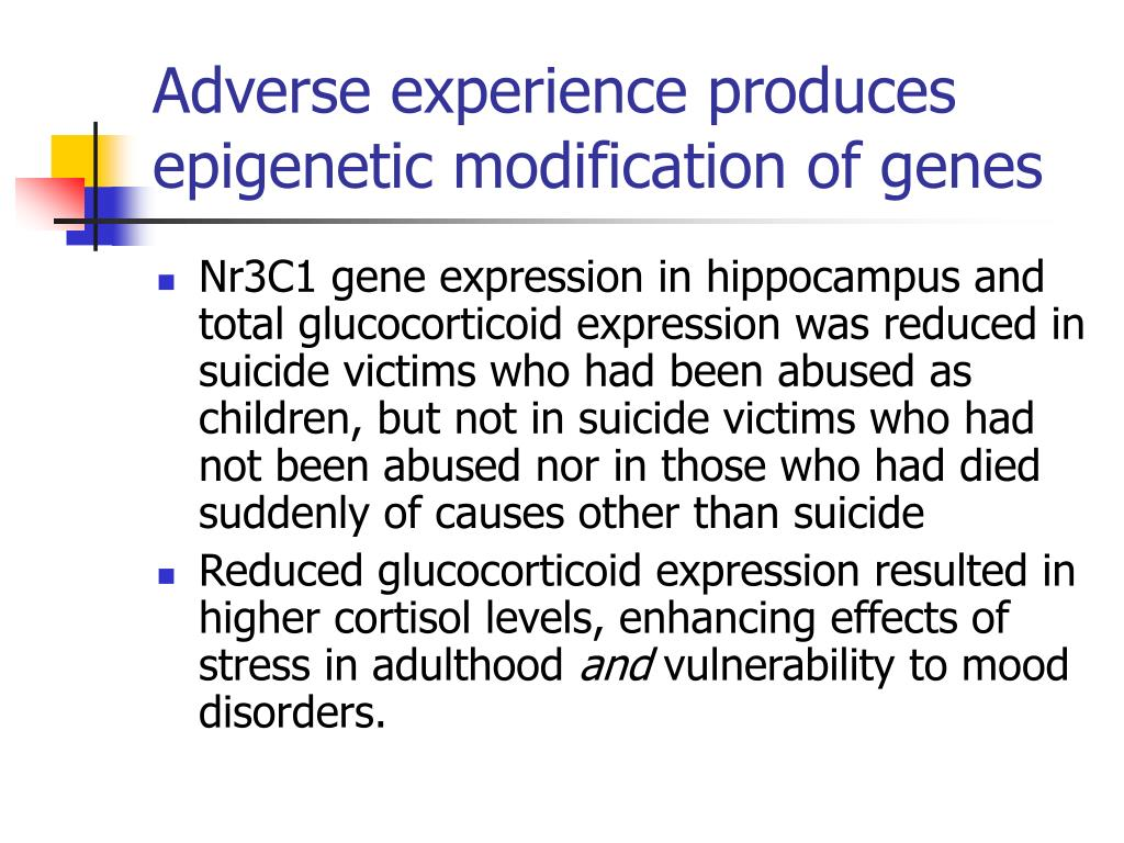 Adverse experience produces epigenetic modification of genes
