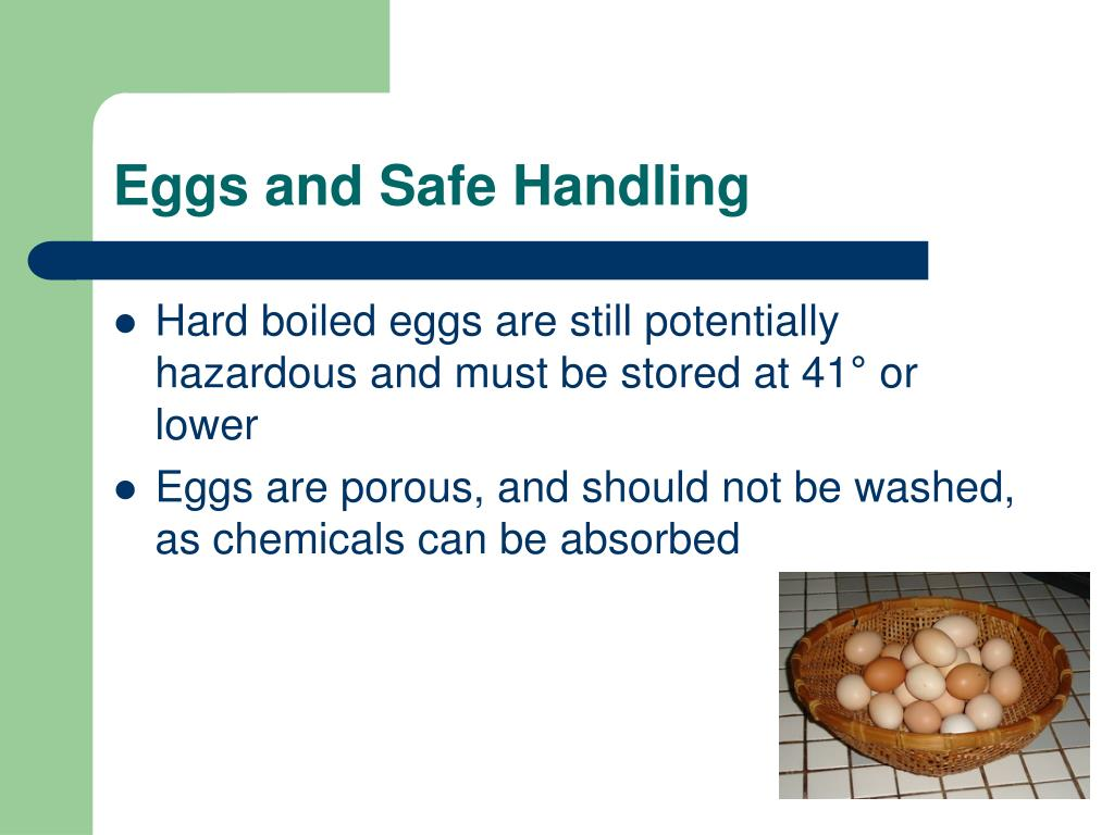 Eggs and Safe Handling