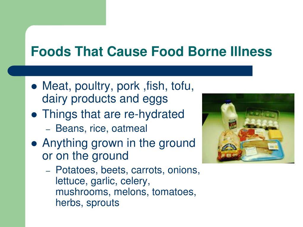 Foods That Cause Food Borne Illness