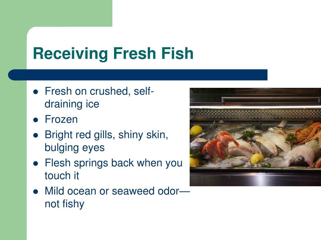 Receiving Fresh Fish