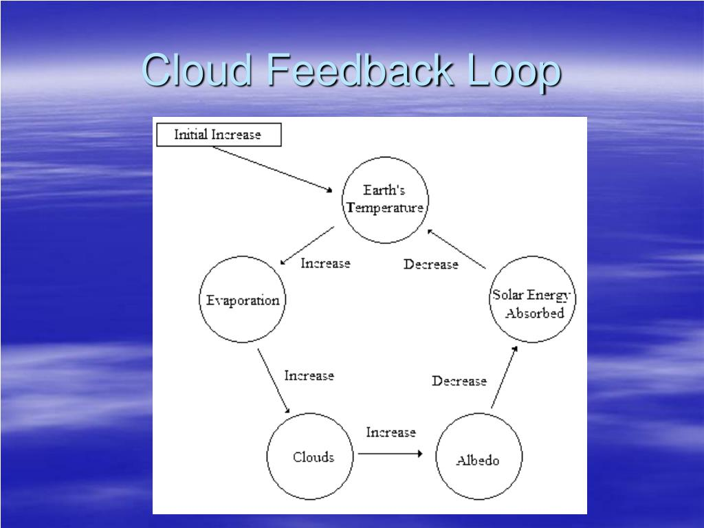 Cloud Feedback Loop