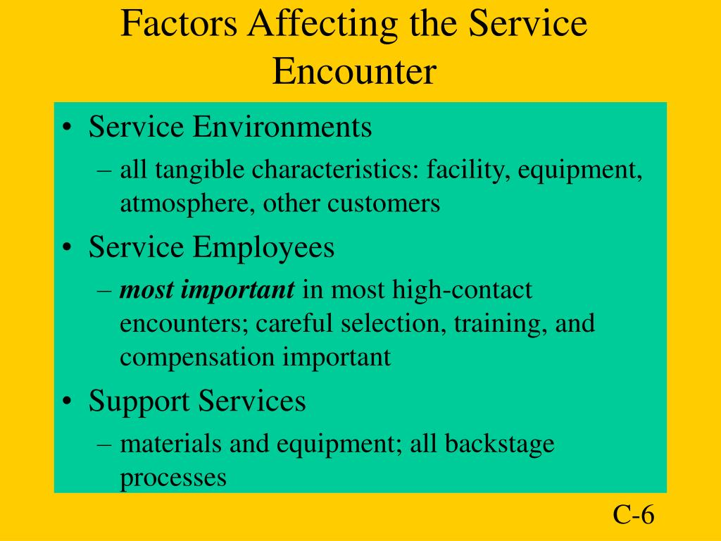 Factors Affecting the Service Encounter