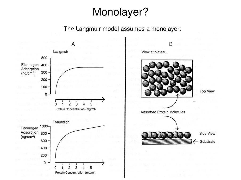 Monolayer?
