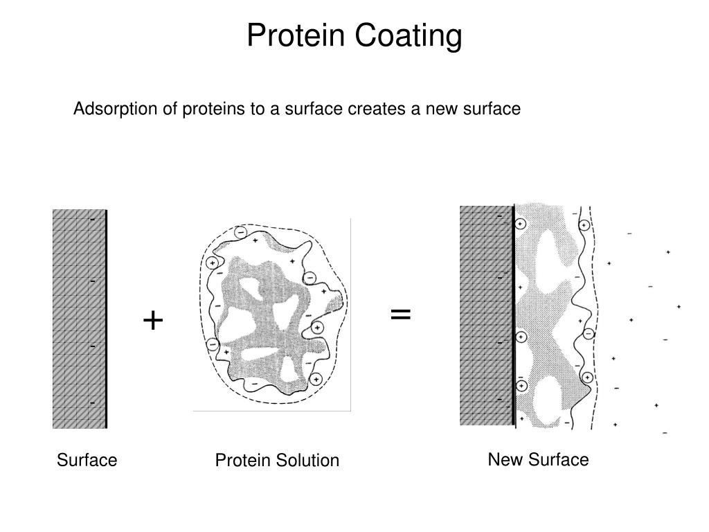 Protein Coating
