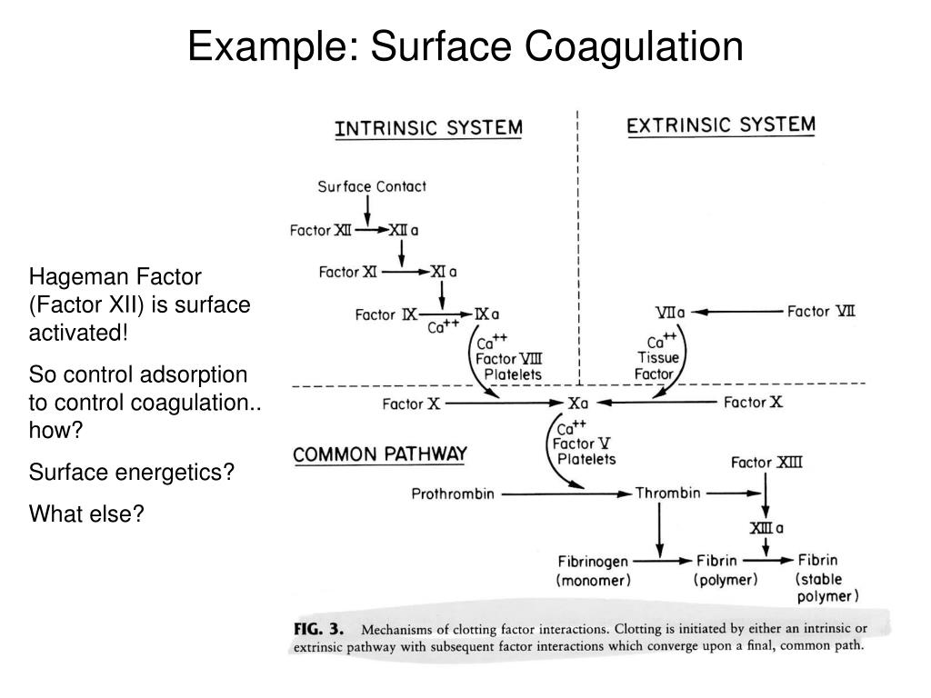 Example: Surface Coagulation