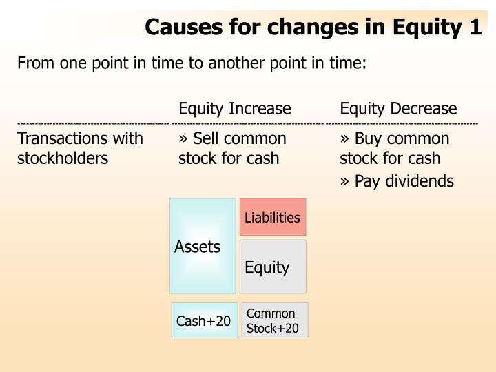 Causes for changes in equity 1