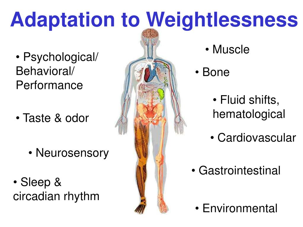 Adaptation to Weightlessness