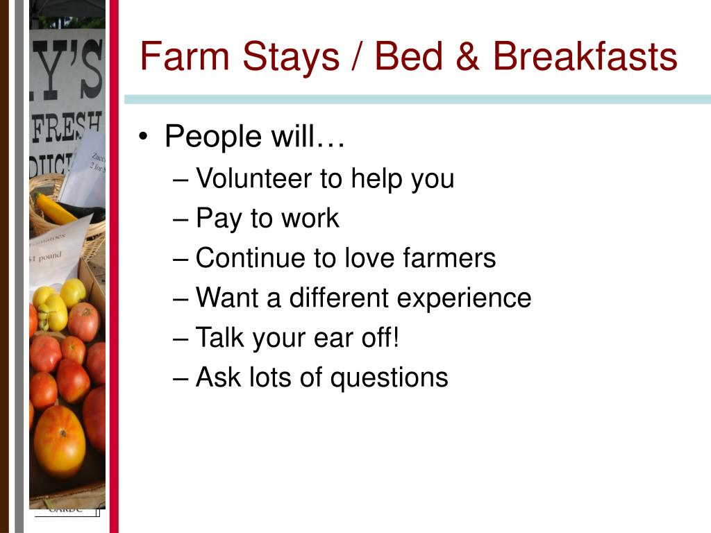 Farm Stays / Bed & Breakfasts