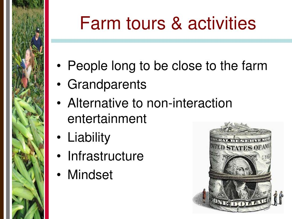 Farm tours & activities
