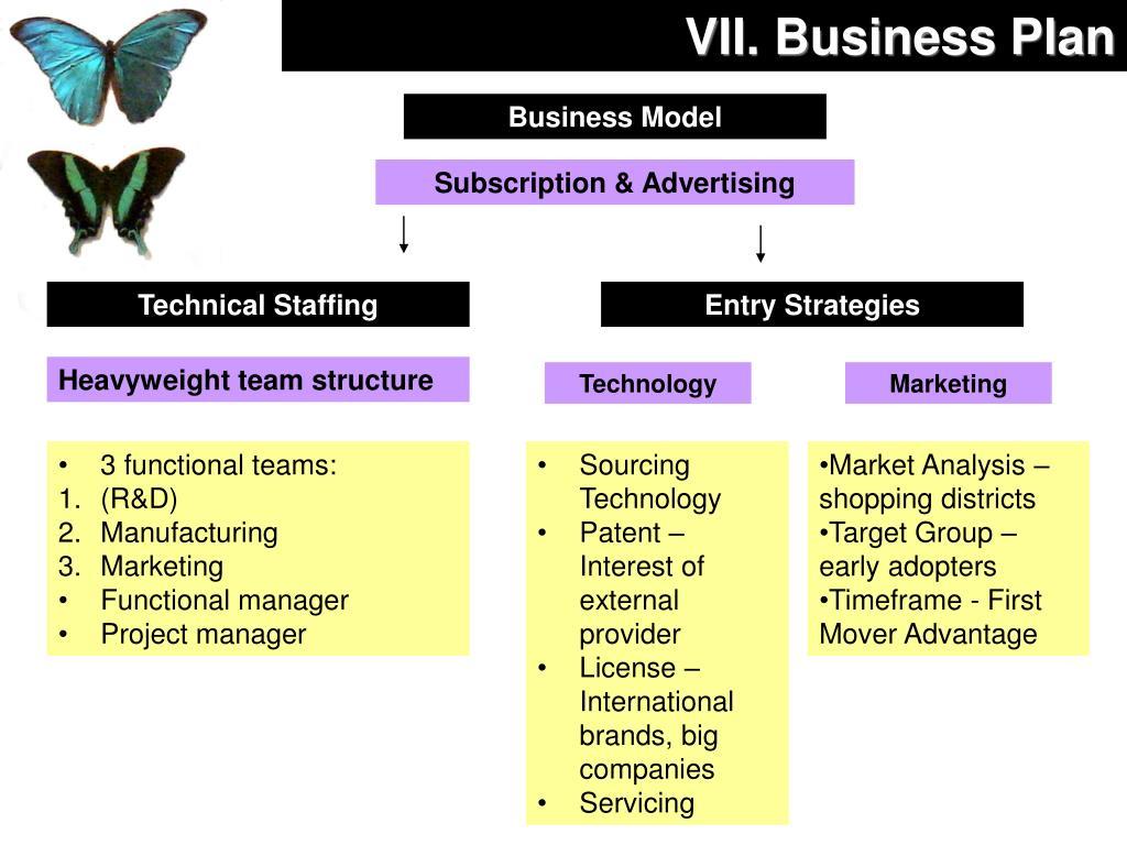 VII. Business Plan