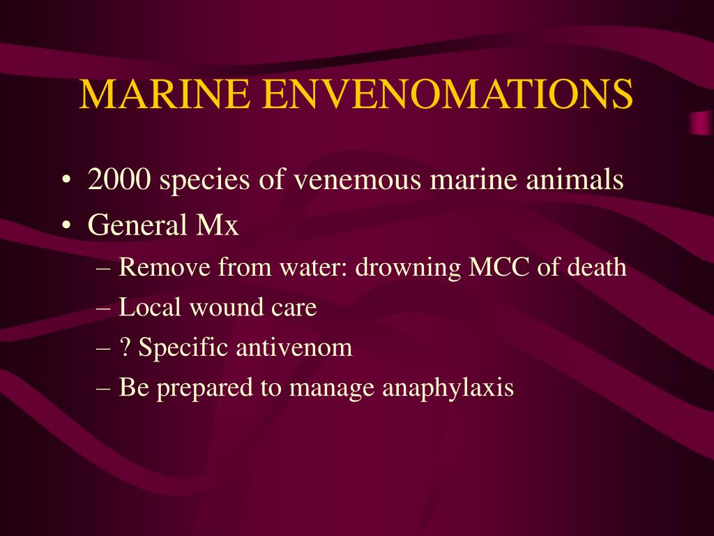 MARINE ENVENOMATIONS