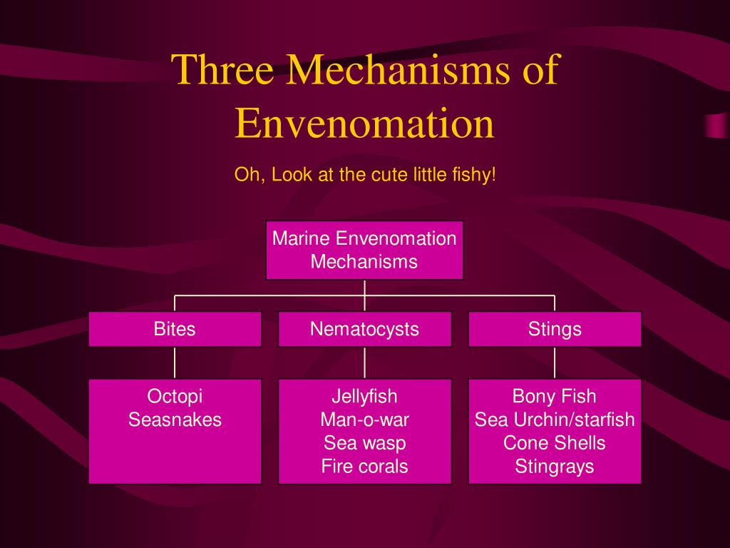 Three Mechanisms of Envenomation