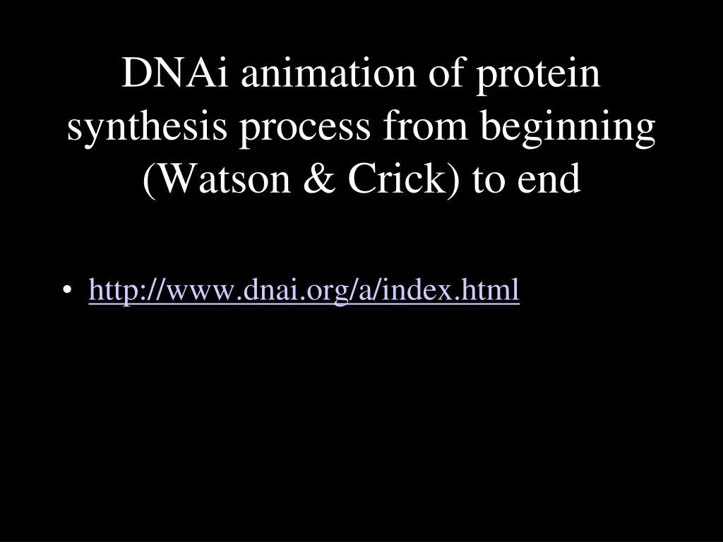 DNAi animation of protein synthesis process from beginning (Watson & Crick) to end