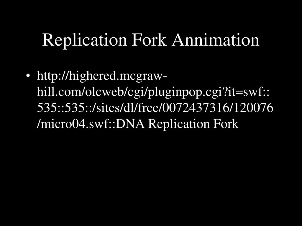 Replication Fork Annimation