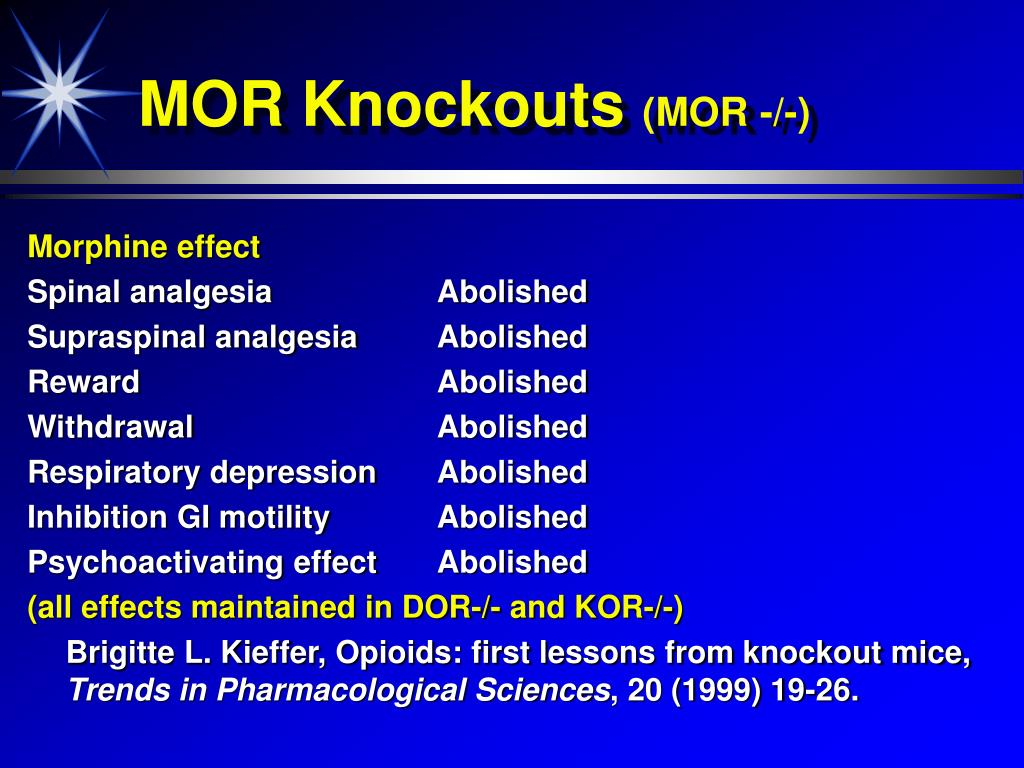 MOR Knockouts
