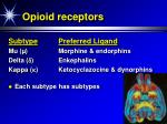 opioid receptors34