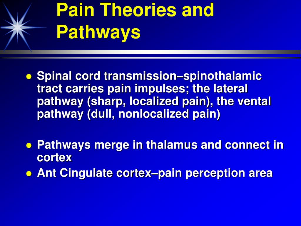 Pain Theories and Pathways