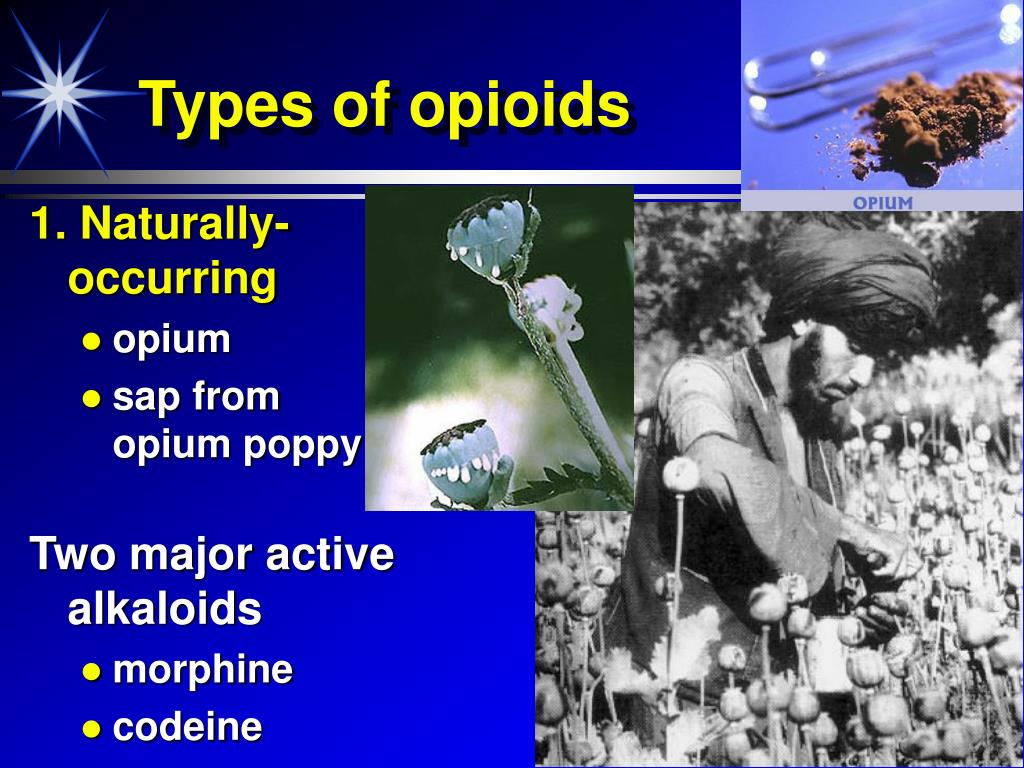 Types of opioids