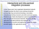 intersectoral and intra sectoral integration processes29