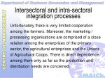 intersectoral and intra sectoral integration processes31
