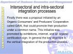 intersectoral and intra sectoral integration processes34