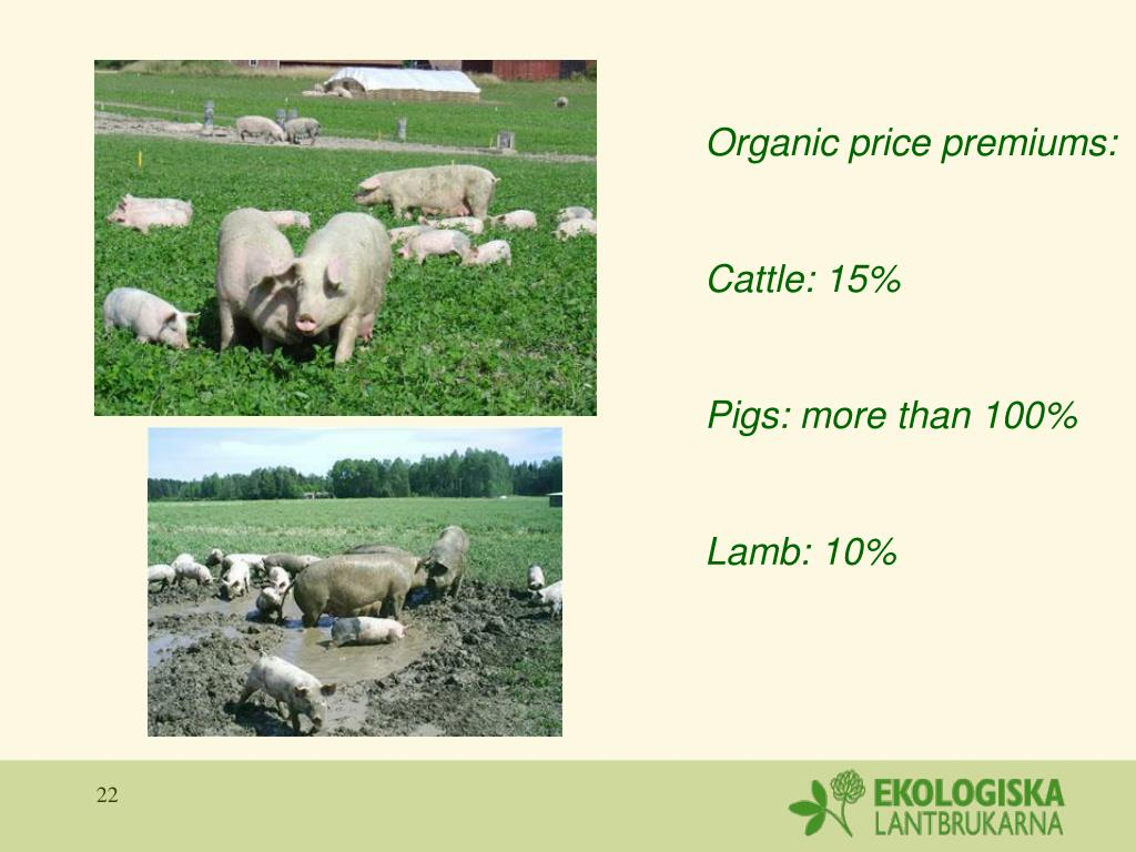 Organic price premiums:
