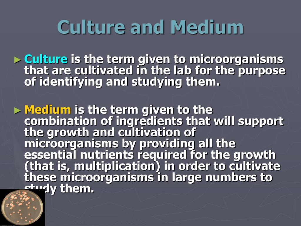 Culture and Medium
