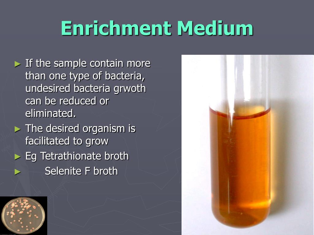 Enrichment Medium