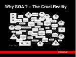 why soa the cruel reality