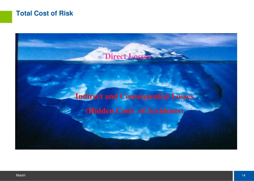 Total Cost of Risk