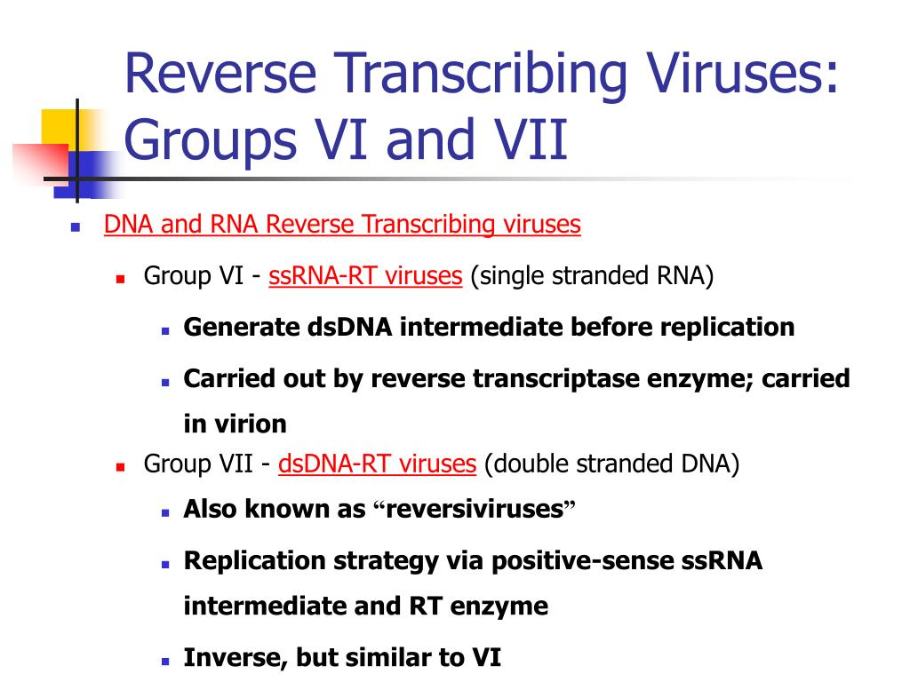 Reverse Transcribing Viruses: Groups VI and VII