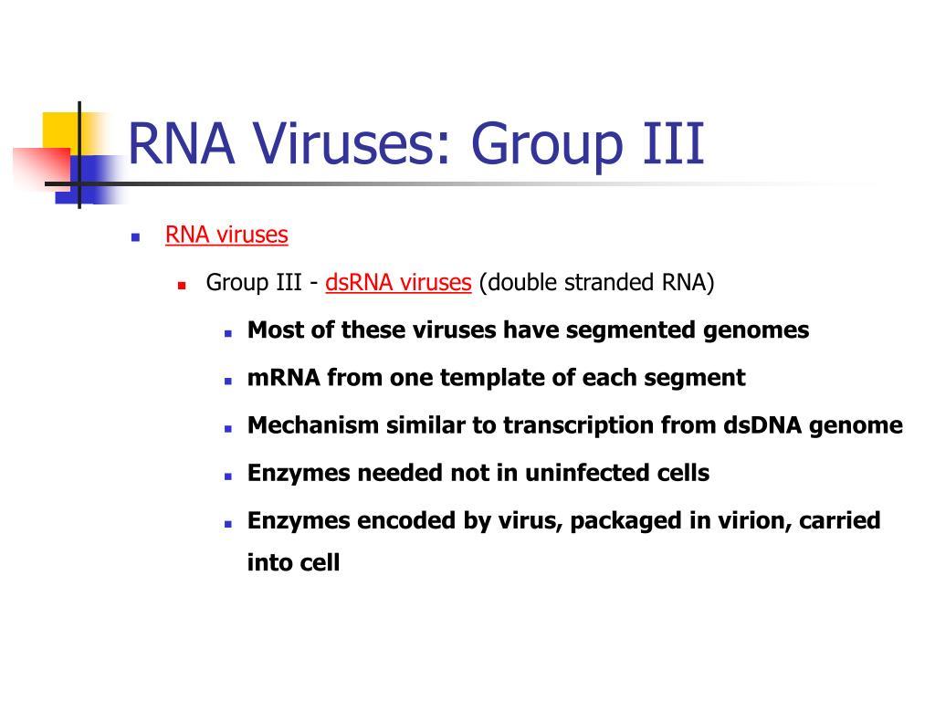 RNA Viruses: Group III