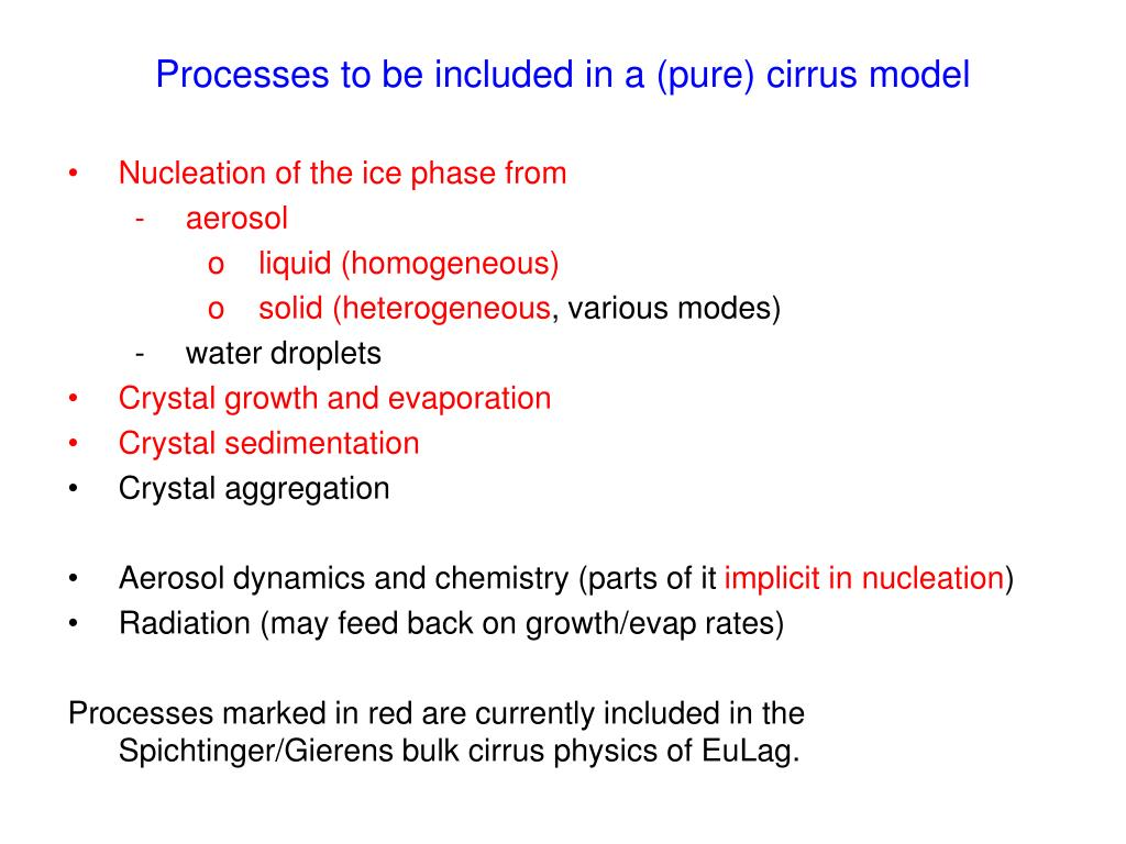 Processes to be included in a (pure) cirrus model